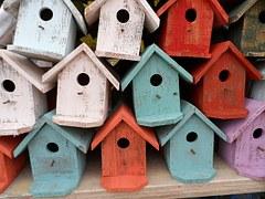 bird-house-72332__180[1]
